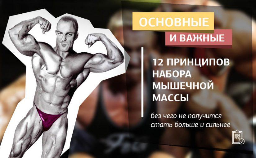 12 принципов набора мышечной массы