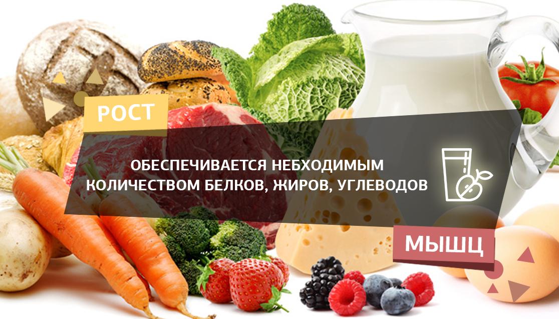 Рост мышц происходит благодаря питанию