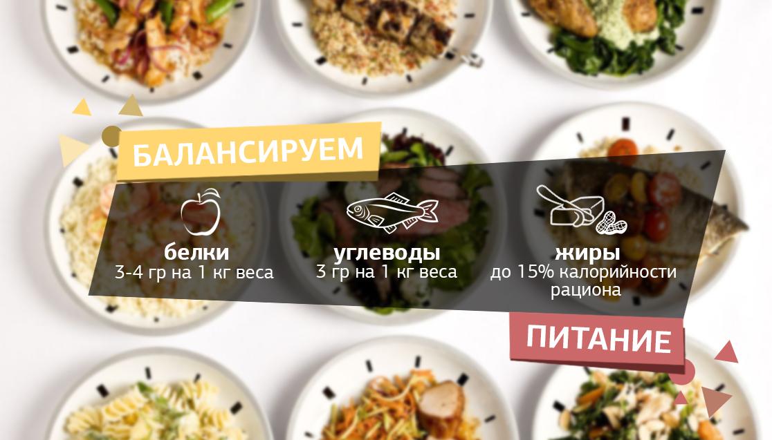 Соотношение - белки, жиры и углеводы