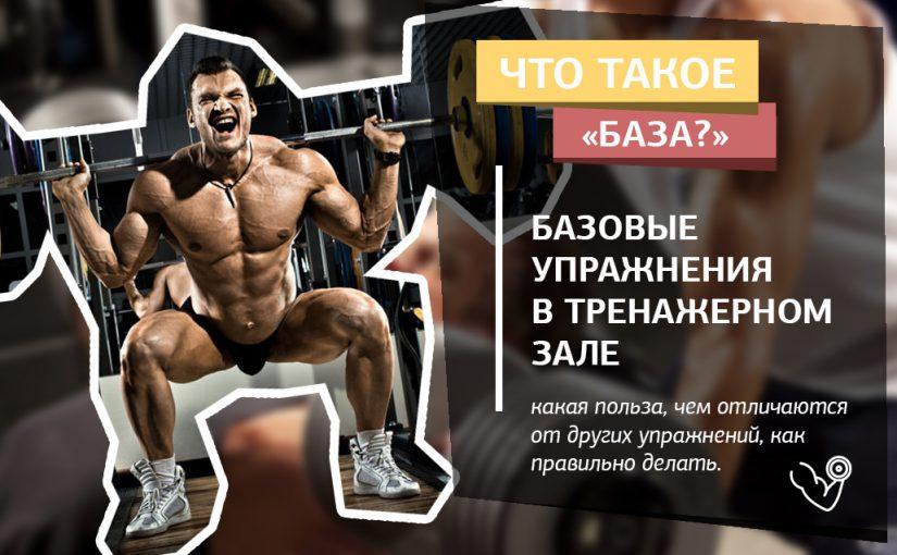 Базовые упражнения в тренажерном зале для набора мышечной массы