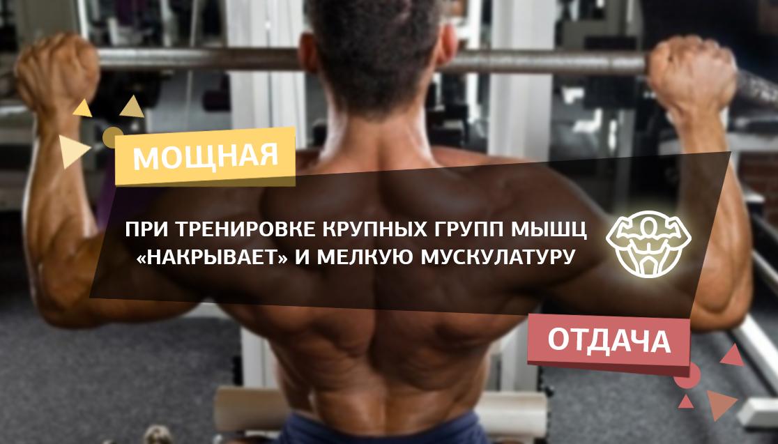 Правильная тренировка мышц синергистов и антагонистов